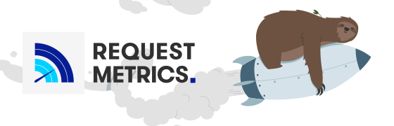 Website Performance Monitoring by Request Metrics